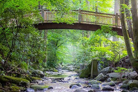Located At The End Of Cherokee Orchard Road And Only A Minutes From Downtown Gatlinburg Is Mynatt Park One Least Visited